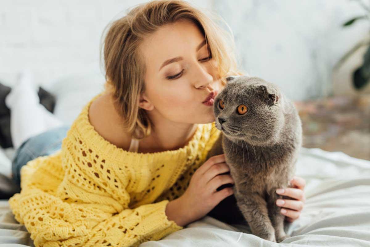 chat aime les bisous