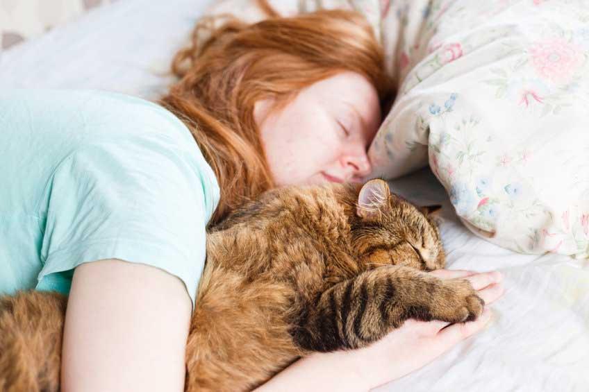 raisons de ne pas dormir avec un chat